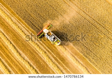 Harvesting. Agricultural machinery. Agriculture industry. Combine harvester working in wheat field. Rural background. Aerial view.