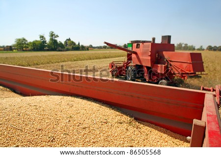 Harvesting and transportation of soybean