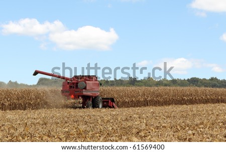 Harvesting corn with a combine against a blue sky with some clouds