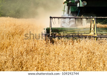 Harvesting machine in wheat crops