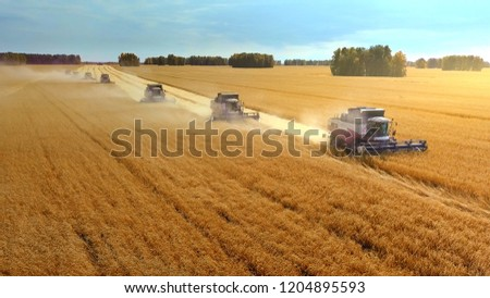 Harvesting machine working in the field. Top view from the drone Combine harvester agricultural machine ride in the field of golden ripe wheat.