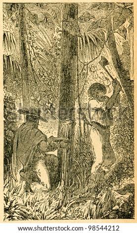 Harvesting milk from galactodendron - old illustration by unknown artist from Botanika Szkolna na Klasy Nizsze, author Jozef Rostafinski, published by W.L. Anczyc, Krakow and Warsaw, 1911