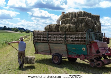 harvesting trailer tractor and farmer in south germany rural countryside at summertime bright day