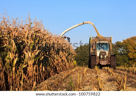 Harvesting wheat on the field with a combine - stock photo