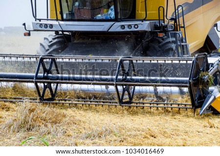 Harvesting wheat with a combine harvester. Field of ripe wheat. Agricultural machinery. #1034016469