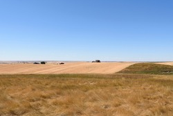 harvests landscape  with prairie grass and field with harvesting equipment in the distant horizon meeting the bright blue skies