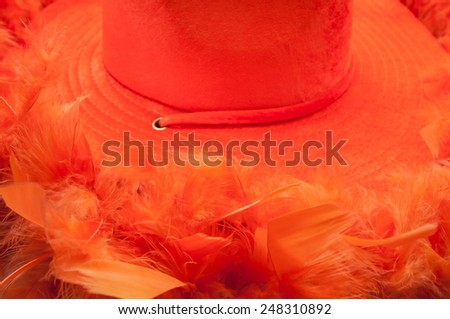Hat and boa in an orange colour as tipical accessories on  King\'s Day in Amsterdam.