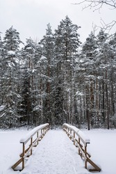 Haukkalampi pond view in winter, snowy trees and wooden bridge, Nuuksio National Park, Espoo, Finland