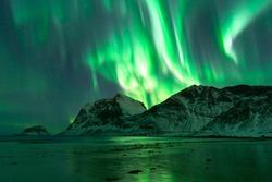 Hauklandbeach, Lofoten / Norway - March 7th 2019: huge northern lights / aurora outbreak over fjord at hauklandbeach near Leknes. lights dazzled green, white, purple over mountains of fjord