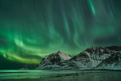 Hauklandbeach, Lofoten / Norway - March 7th 2019: huge northern lights / aurora outbreak over fjord at hauklandbeach near Leknes. lights dazzled green, white over mountains of fjord Vikbukta