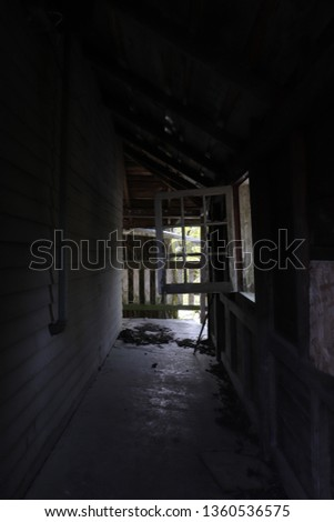 Haunted House in the Everglades