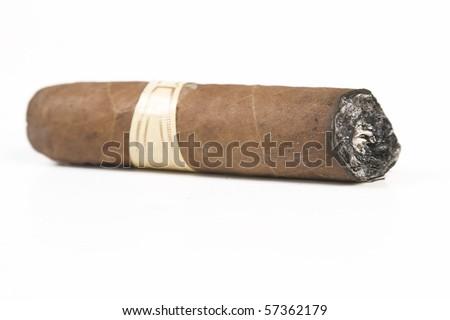 Havana brown cigar burned on white background