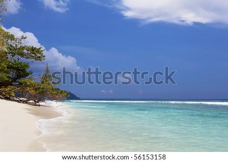 Havelock island lagoon. Andaman islands - India