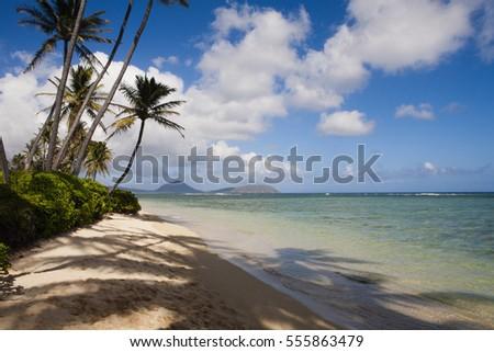 Hawaii #555863479