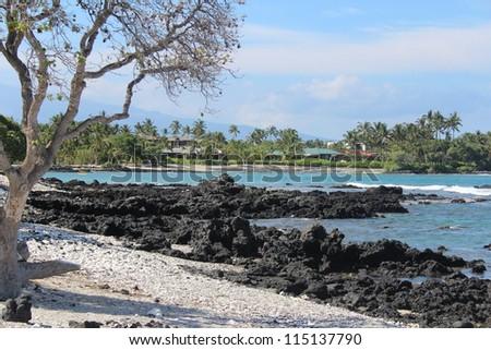 Hawaii Big Island Shoreline