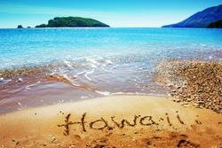 Hawaii island/ summer holidays background