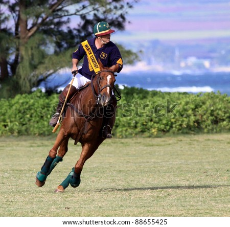 HAWAII - MAY 29: Bill Wyland competes in a polo match at Mokuleia Polo Field May 29, 2011 at Mokuleia, Hawaii.