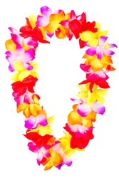 Hawaiian lei beads with vibrant colors isolated on a white background