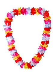 Hawaiian lei necklace isolated on white background