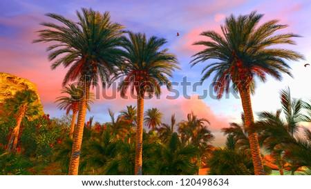 Hawaiian paradise at awesome sunset