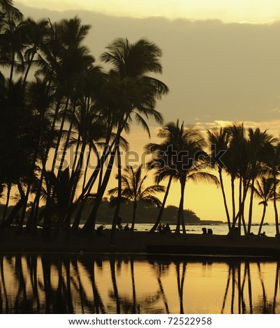 Hawaiian scenic: silhouettes of beachgoers under palm trees, waiting for sunset, at Anaehoomalu Bay on the Kona Coast of the Big Island