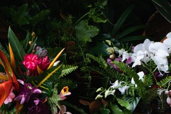 Hawaiian tropical flowers bouquet colourful beautiful flower arrangement