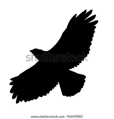 Hawk Silhouette Raster