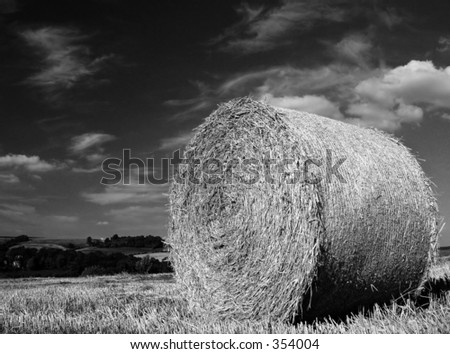 Hay bail in black and white
