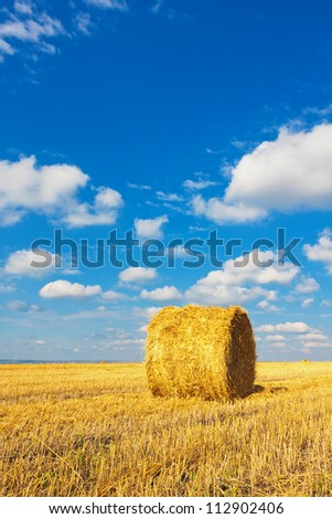 Hay bale on the field beneath cloudy sky
