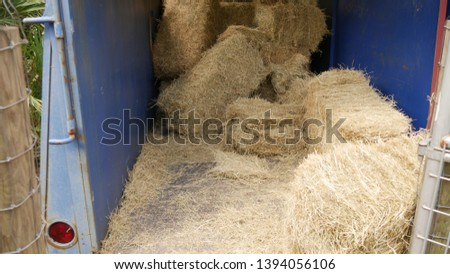 Hay Bales Grass Mess Stacked #1394056106