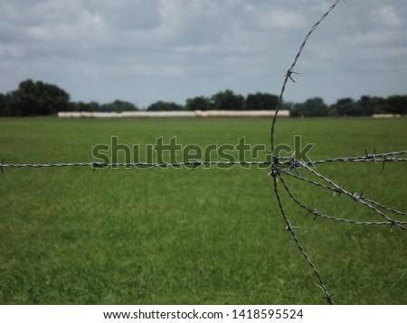 hay bales hay bales in a field  #1418595524