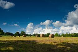 Hay bales in a field in Northwest Arkansas.