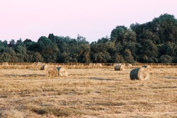 Hay Bales in a field in the British Countryside during Sunset