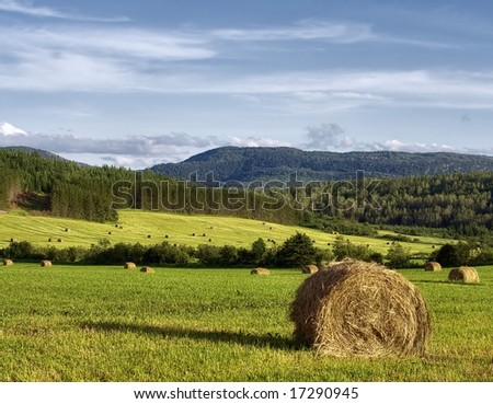 Hay bales in a field with forest and mountain in background