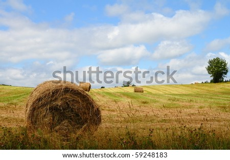 Hay bales in a summer field with beautiful clouds in the sky