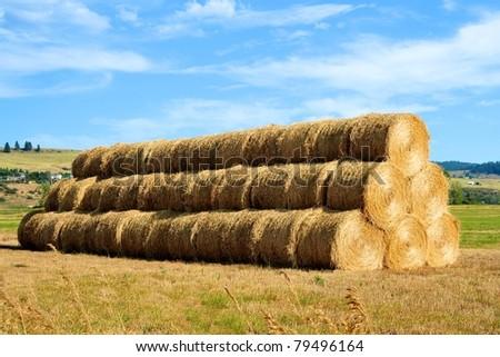 Hay bales in eastern Washington