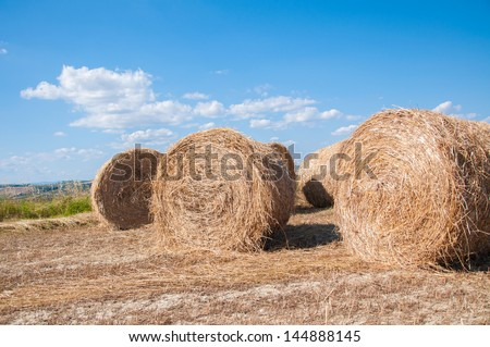 hay bales in orcia valley #144888145