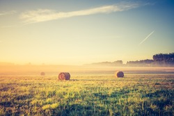 hay bales on foggy morning on meadow. sunrise landscape photo with vintage effect