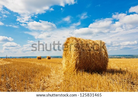 Hay bales on the field beneath cloudy sky - stock photo