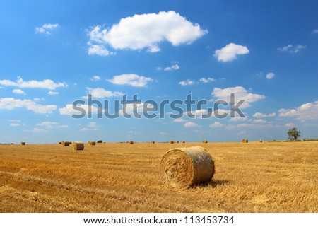 Hay bales on the field with blue sky and small clouds above