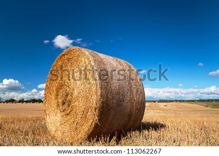 Hay bales on the swedish field