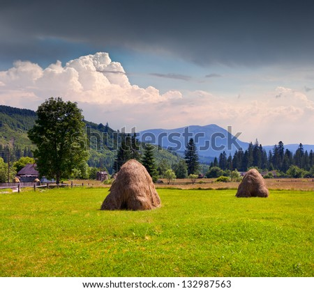 Hay in a village in the Carpathian mountains. Ukraine, Europe.