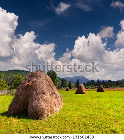 Hay in a village in the mountains at summer