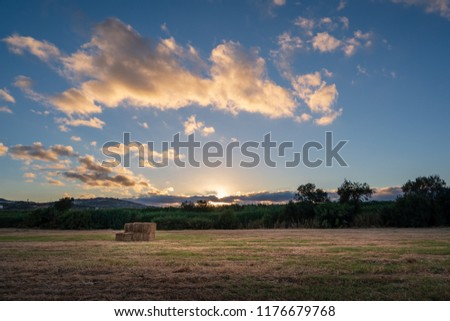 Hay on a field during a sunset with clouds and the sun #1176679768