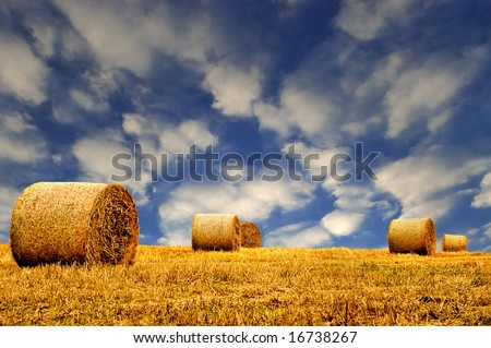 Hay or Straw Bales.