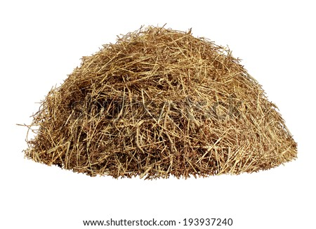 Hay pile isolated on a white background as an agriculture farm and farming symbol of harvest time with dried grass straw as a mountain of dried grass haystack. #193937240