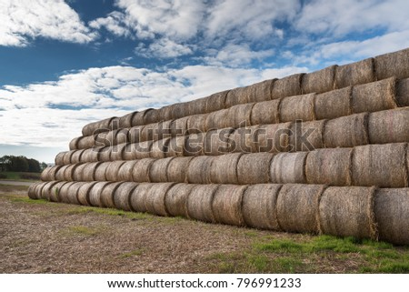 Hay rolls in stack on field. #796991233