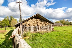 Hay storage with harvested bales of hay for cattle. Agricultural barn canopy with bales hay in summer
