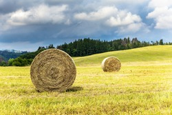 Haystack agriculture field landscape. Agriculture field hay stacks.Mown meadow with blue sky and clouds. Agricultural landscape in the Czech Republic.