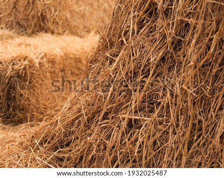 Haystack, hay straw, Bale of hay group, dry grass (hay), dry straw  Foto stock ©